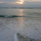 ocean-aout08-32.jpg
