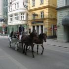 VienneMai05-022.jpg